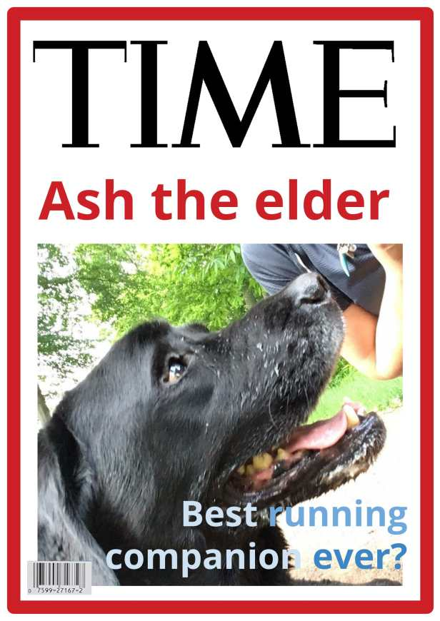 Time Magazine Cover-1